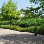 Parc Treille (8)