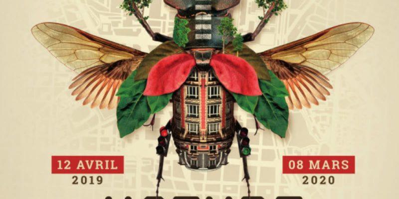 Activités des musées de Clermont Auvergne Métropole du 13 au 19 septembre